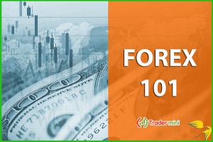 tải sách forex 101 tài liệu cho người mới tìm hiểu thị trường forex